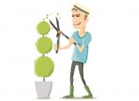 Profitez d'un broyat de branches gratuit !